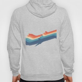 Retro 1970's Airliners Hoody