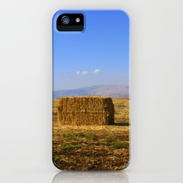 Hay iPhone Case