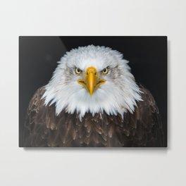 Eagle A1 Metal Print