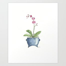 Blue Boho Planter With Pink Orchid Art Print