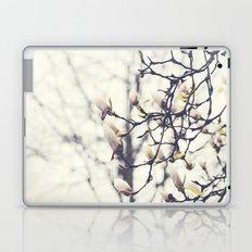 Magnolia Tree Laptop & iPad Skin