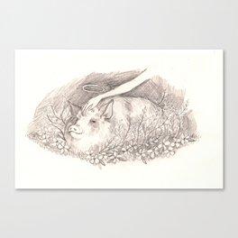 Holy Pig Canvas Print