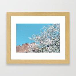 Snowing in spring Framed Art Print
