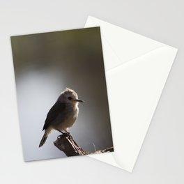 Birds from Pantanal chibum Stationery Cards