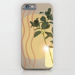 Green Leafed Plant Inside Vase, Sun Reflection Scene iPhone Case
