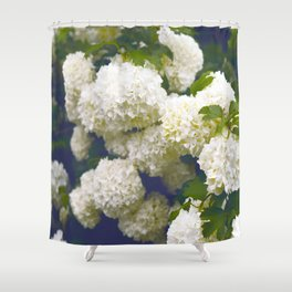 Vintage White Summer Hydrangea Flowers In Full Bloom In The Summer Time Shower Curtain