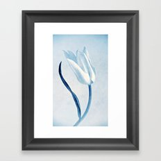 white tulip Framed Art Print