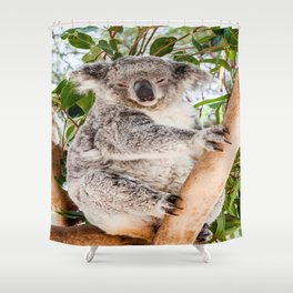Shh! It's Nap Time, Koala, Australia Shower Curtain