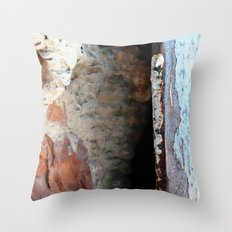 Pieces of a Wall Throw Pillow