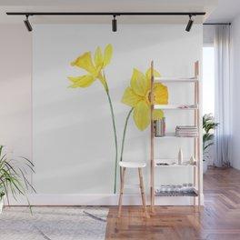 two botanical yellow daffodils watercolor Wall Mural