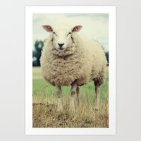 sheep Art Prints featuring Sheep by Falko Follert Art-FF77