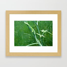 green grass stems Framed Art Print