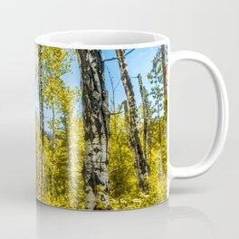 Landscape Aspen Forest Custer State Park Print Coffee Mug