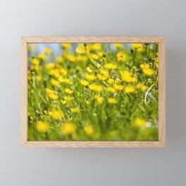 Buttercups in motion Framed Mini Art Print