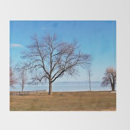The Tree by the Frozen Lake Throw Blanket
