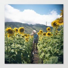 Swimming in Sunflowers in Hawaii Canvas Print