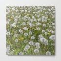 dandelion meadow II by blackpool