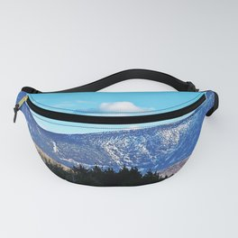 North Face Mont Albert Fanny Pack