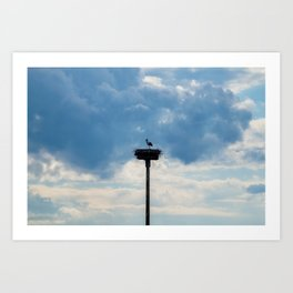 A Stork among the Clouds Art Print