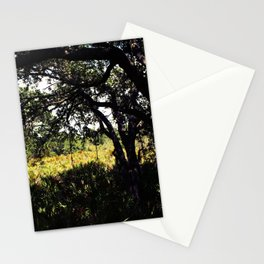 Palmettos in the shade  Stationery Cards