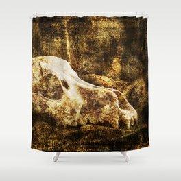 Vintage Skull Shower Curtain