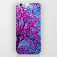 purple tree XXIX iPhone & iPod Skin