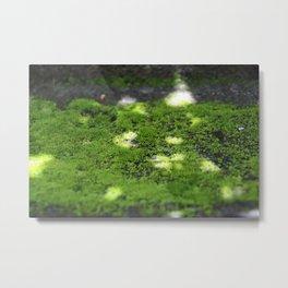 Textures - Moss Metal Print
