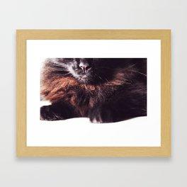 Grade A Fluff Framed Art Print