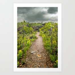 The path of Cerrado. Rocky trail surrounded by the Cerrado vegetation of Brazil on a cloudy day. Art Print