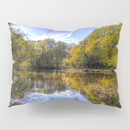 The Silent Pond Pillow Sham