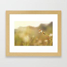 Perfect Framed Art Print