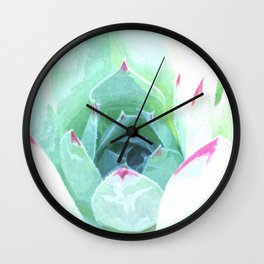 Cactus succulent in green and pink Wall Clock