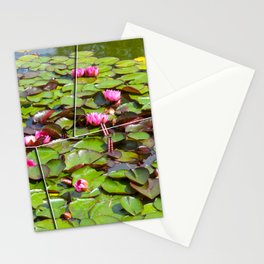 Lilies  flower pond Stationery Cards
