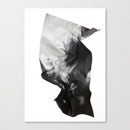 Wrinkled dreams Canvas Print