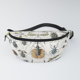 Adolphe Millot- Vintage Insect Print Fanny Pack