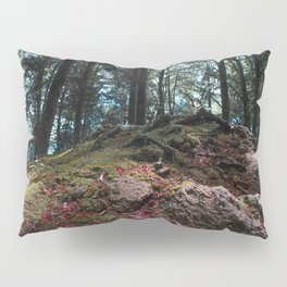 Entwined in Stone Pillow Sham