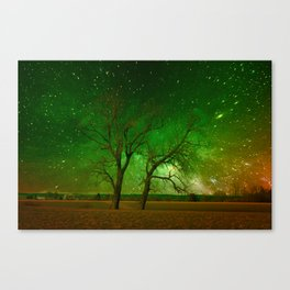 Nature spectacle Canvas Print