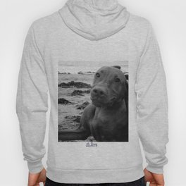 PAWPRINTS IN THE SAND Hoody