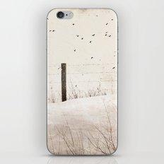 Roadside fence iPhone & iPod Skin