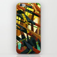 The Panther's Claws iPhone & iPod Skin