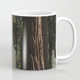 Sunlit California Redwood Forests Coffee Mug