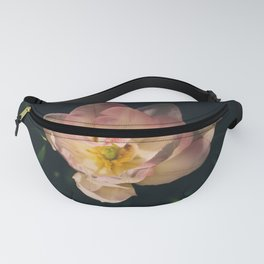 Among others Fanny Pack