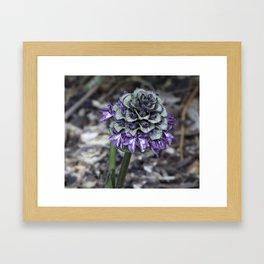 Zebra Flower Framed Art Print