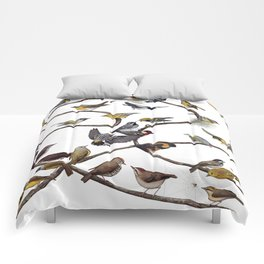 Warblers of New England Comforters