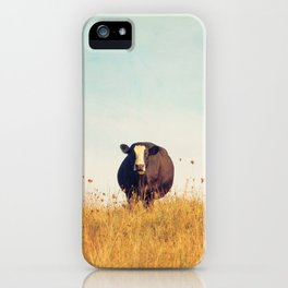 Moooo -- Autumn Landscape -- Cow in a Pasture iPhone Case
