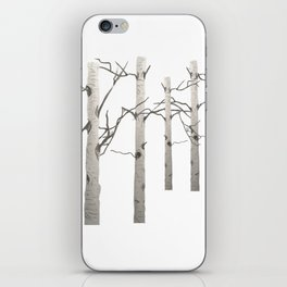 Birch Tree Forest White Bark Aspens Winter iPhone Skin
