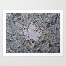 freezed Art Print