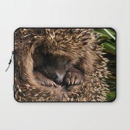 A rolled-up hedgehog Laptop Sleeve