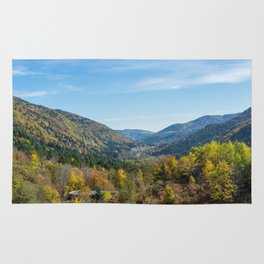 Colorful French valley Rug