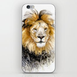 African Lion Male iPhone Skin